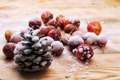 fruits couverts de neige des pommes naines Photos libres de droits