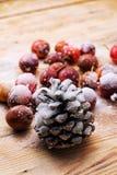 fruits couverts de neige des pommes naines Images libres de droits
