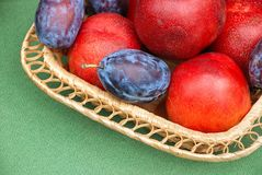 Fruits crop in a basket Stock Images