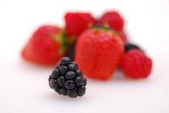 Fruits d'été Images stock