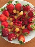 Fruits d'été Images libres de droits