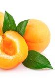 Fruits d'abricot avec la lame verte Photographie stock