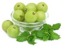 Fruits d'Amla avec les feuilles en bon état Photo libre de droits
