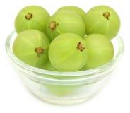 Fruits d'Amla dans un bol en verre Photographie stock