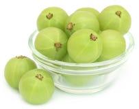 Fruits d'Amla dans un bol en verre Images stock