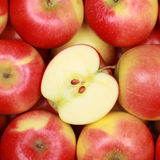 Fruits d'Apple Photographie stock libre de droits