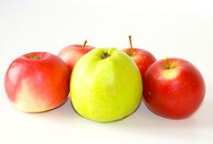 Fruits d'automne image libre de droits