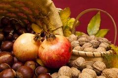 Fruits d'automne Images stock