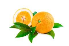 Fruits d'oranges d'isolement sur le blanc Photographie stock libre de droits