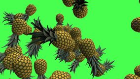 Fruits 3D, transitions visuelles d'ananas de remorquage d'isolement sur un écran vert, longueur 4K illustration stock