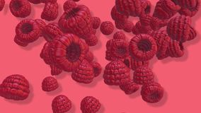 Fruits 3D, transitions visuelles de framboise de remorquage d'isolement sur un écran vert, longueur 4K illustration libre de droits