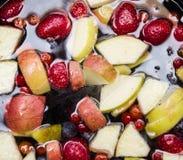 Fruits dans l'eau Photographie stock libre de droits