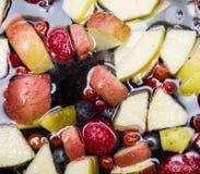 Fruits dans l'eau Image libre de droits