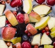 Fruits dans l'eau Image stock