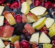 Fruits dans l'eau Photos stock