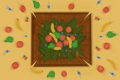 Fruits dans une boîte Image stock