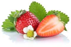Fruits de baie de baie de fraises de fraise d'isolement sur W Photographie stock
