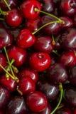 Fruits de cerise avec des lames Image stock