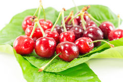 Fruits de cerise avec des lames Photos libres de droits