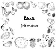 Fruits de croquis et baies, bannière illustration de vecteur