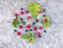 Fruits de forêt à l'arrière-plan concret Image stock