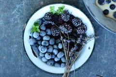 Fruits de forêt photographie stock libre de droits