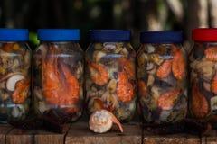 Fruits de la mer au vinaigrette dans les Caraïbe vénézuéliennes Photo stock