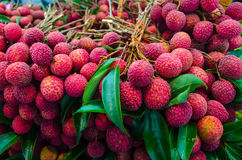 Fruits de Lychee Photo libre de droits