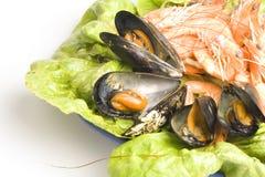 Fruits de mer Photographie stock libre de droits
