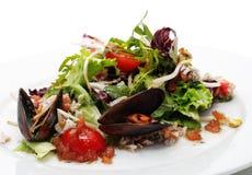 fruits de mer de salade photos libres de droits