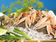 Fruits de mer et poissons sur la glace image stock