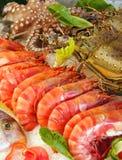 Fruits de mer frais Photo libre de droits