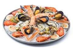 Fruits de mer frais Photo stock