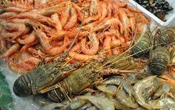 Fruits de mer frais Images libres de droits
