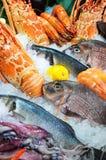 Fruits de mer frais Photos stock