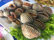 Fruits de mer frais cuits de coque avec de la sauce épicée photographie stock