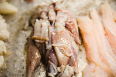 Fruits de mer frais dans le marché, les crevettes roses de homards et les poissons asiatiques Photos stock