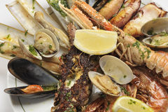 Fruits de mer frits image stock