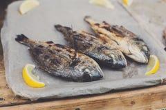 Fruits de mer, poisson de dorado grillé au barbecue Images libres de droits
