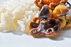 Fruits de mer Poulpes et riz entiers Images stock