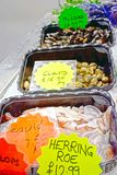 Fruits de mer sur la stalle du marché de poissons et de nourriture photos libres de droits