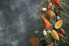 Fruits de mer sur un fond foncé, crevettes, moules, moules sur la pierre noire, l'espace de copie Image stock