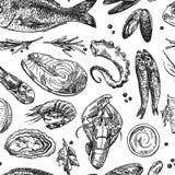 Fruits de mer tirés par la main d'illustration de vecteur Style de croquis de vintage illustration libre de droits
