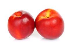 Fruits de nectarine sur un fond blanc Images libres de droits