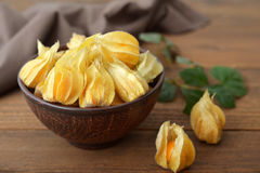 Fruits de Physalis Photo stock