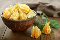 Fruits de Physalis Photo libre de droits