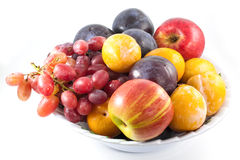 Fruits de plaque Image stock