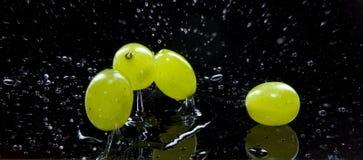 Fruits de raisins Photographie stock