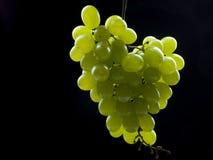 Fruits de raisins Photo stock
