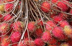 Fruits de ramboutan Photo libre de droits